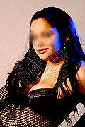 L'aquila Veronica Dolce 338.9088555 foto 6